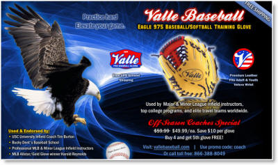 Valle Eagle Training Glove